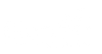 bloom-flower